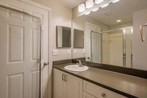 The Park at Turtle Run Bathroom with Vanity Lights and Large Counterspace