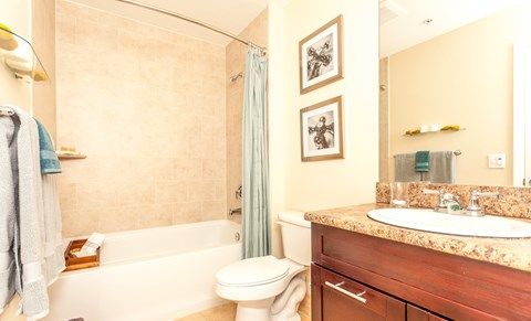 Red Road Commons Student Living Miami, FL Bathroom with Curved Shower Rod