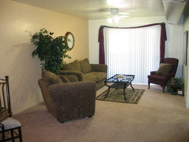 Living Rooms With Wall-to-Wall Carpeting at Desert Creek, New Mexico, 87107