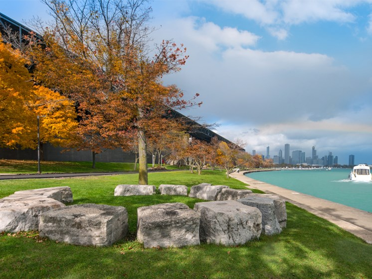 McCormick Place Chicago view of the lake with tree