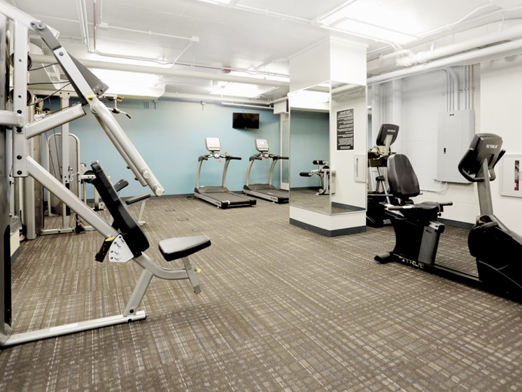 Fitness center with cardio and weight lifting machines