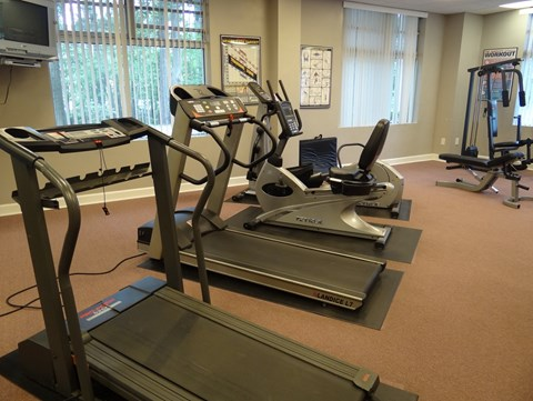 Fitness Center at Wedgwood Apartments in Raleigh, NC