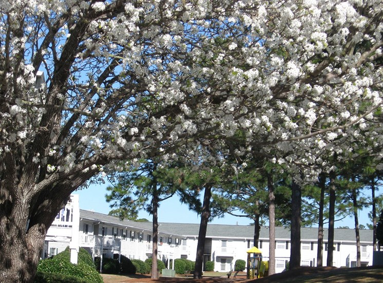 townhomes for rent in Wilmington NC