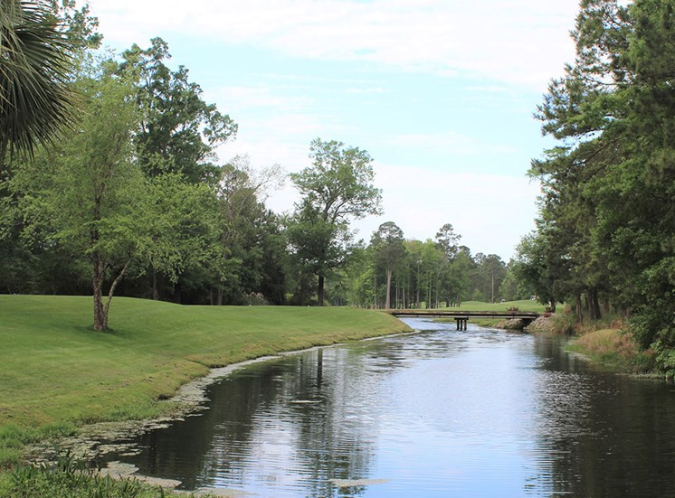 Pond 2 at Flintlake Apartments in Myrtle Beach SC