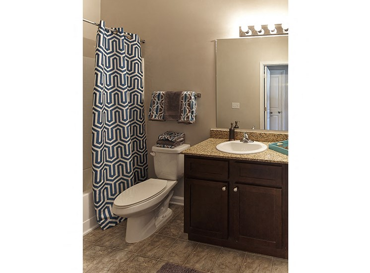 Vanity and toilet in Bathroom