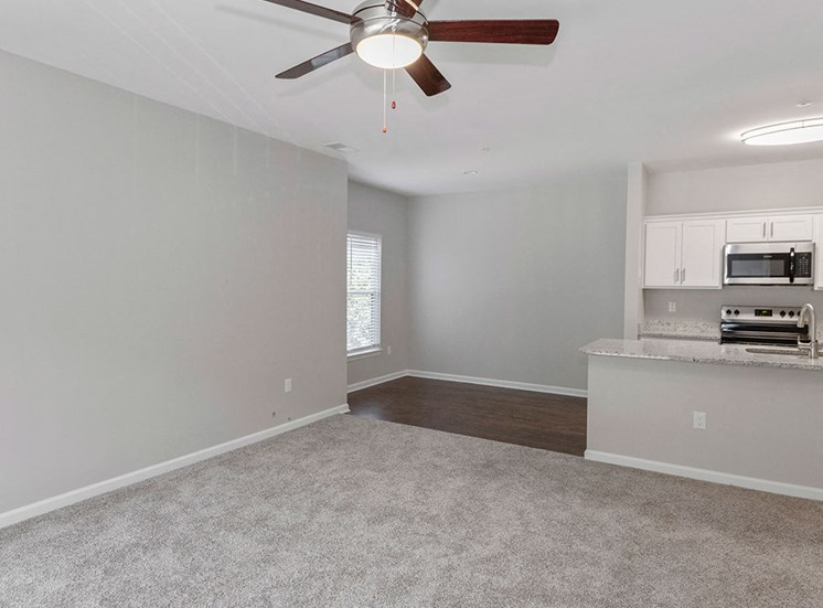 New Carpet and Flooring in Renovated Apartments