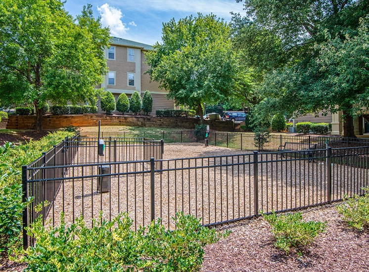 Dog Park at Mayfaire Apartments in Raleigh NC