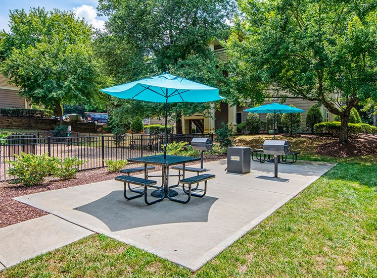 Grill area 3 at Mayfaire Apartments in Raleigh NC