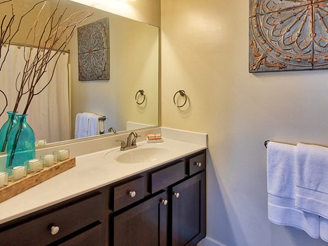 Baths with Espresso Cabinets at Solace Apartments