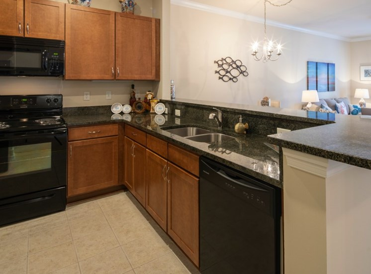 luxury apartment kitchen  in Virginia Beach