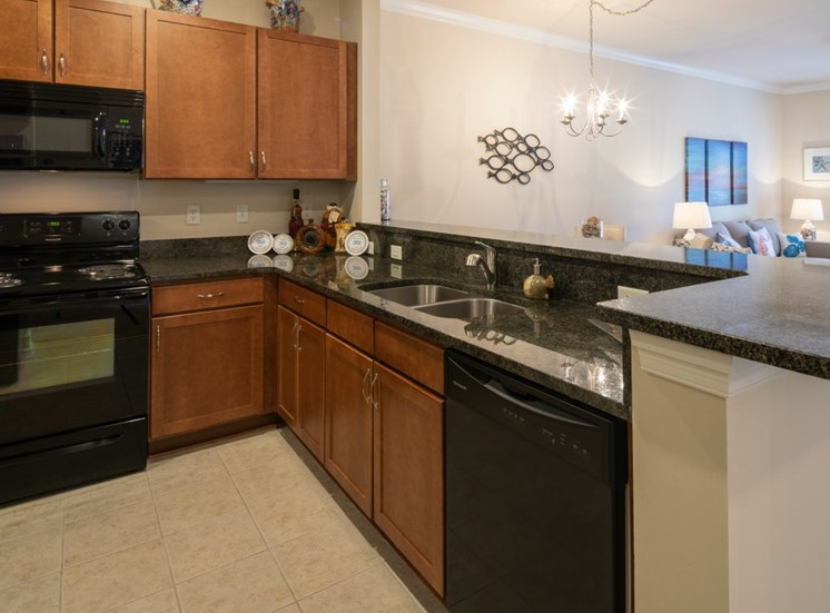 luxury apartments kitchen in Virginia Beach