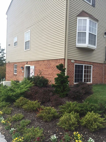Dunfield Townhomes in White Marsh MD