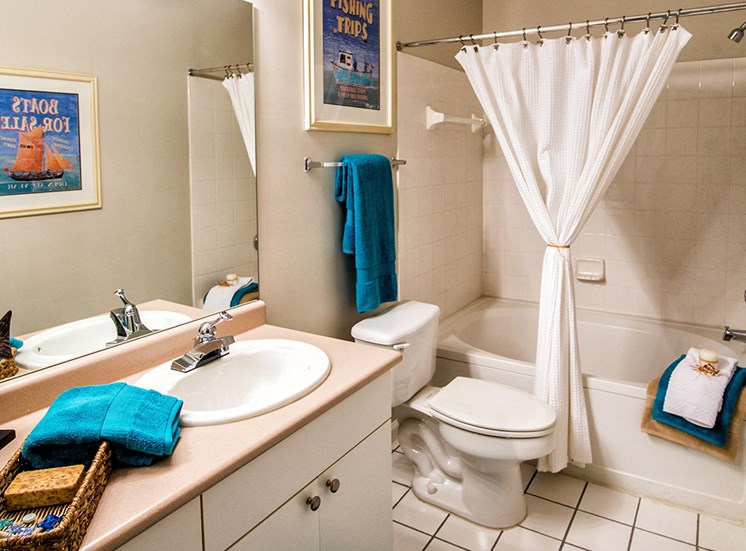 Bath at The Grove at Oakbrook Apartments in  Summerville  SC