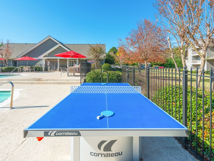 Ping Pong Table at Echelon Park, Georgia