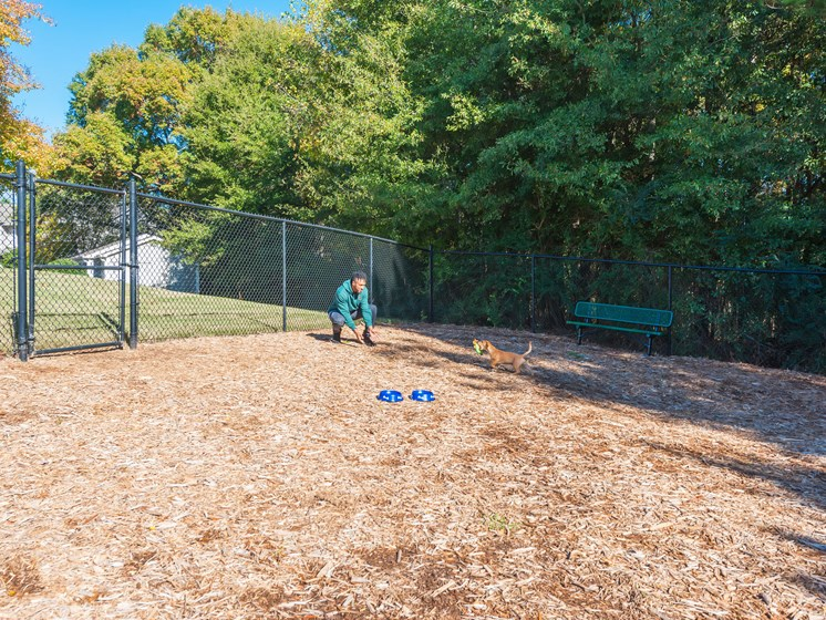 Leash Free Dog Park at Echelon Park, McDonough