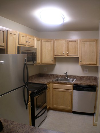 300 3rd Street NE Studio-1 Bed Apartment for Rent Photo Gallery 1