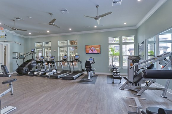 Apartments On Seminole Blvd Largo Fl