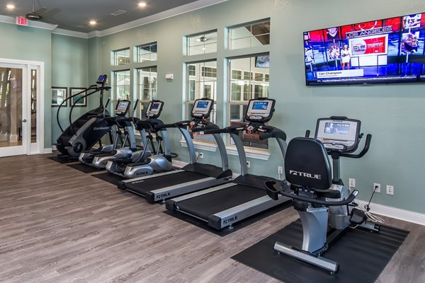 The Boulevard Apartments - Largo, FL - Fitness Center