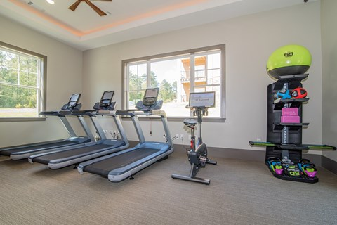 Lodge at Croasdaile Farm Fitness Center Equiptment