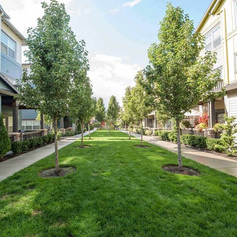 Community Grounds and apt  buildings Latitude Apt  homes Happy Valley OR