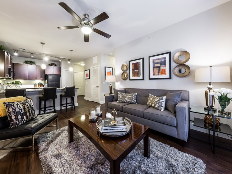 Well Furnished Apartment at Grand at the Dominion, San Antonio, 78257