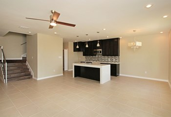 7901 Elka Loop 3 Beds Apartment for Rent Photo Gallery 1