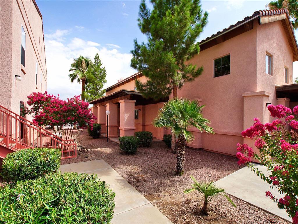 Tucson photogallery 3