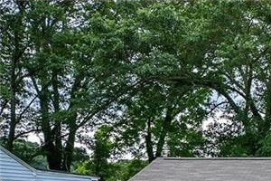 942 Astor Avenue SW 3 Beds House for Rent Photo Gallery 1