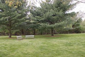 Brookwood at Ridge Theme Left Image 31