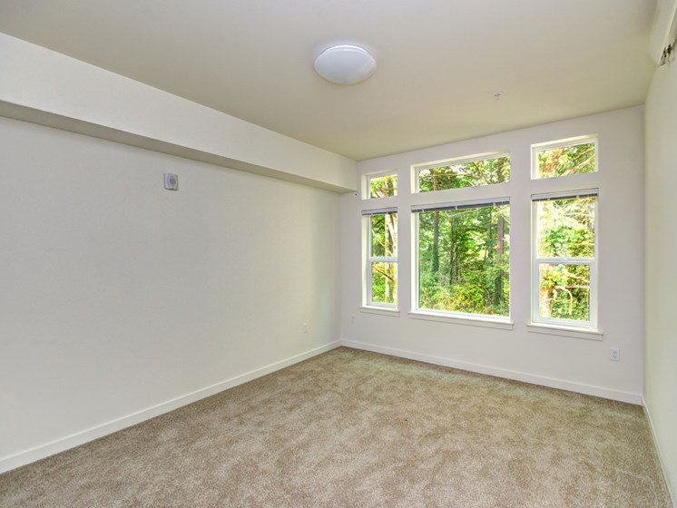 9-Foot Ceilings at Emerald Crest, Bothell, 98011