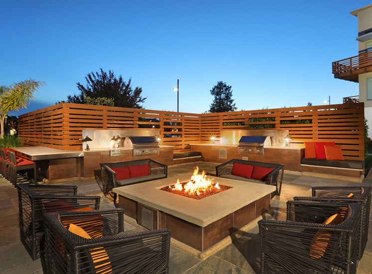 Fire Pit & Grilling Station