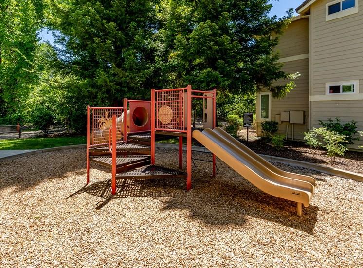 Preserve at Blue Ravine - Playground