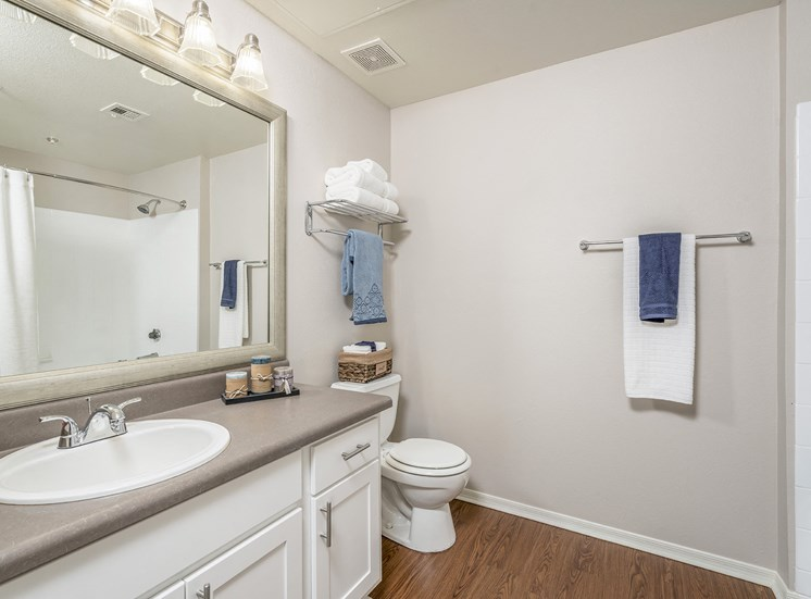 Sonterra Apartments at Paradise Valley - Newly upgraded lighting and fixtures