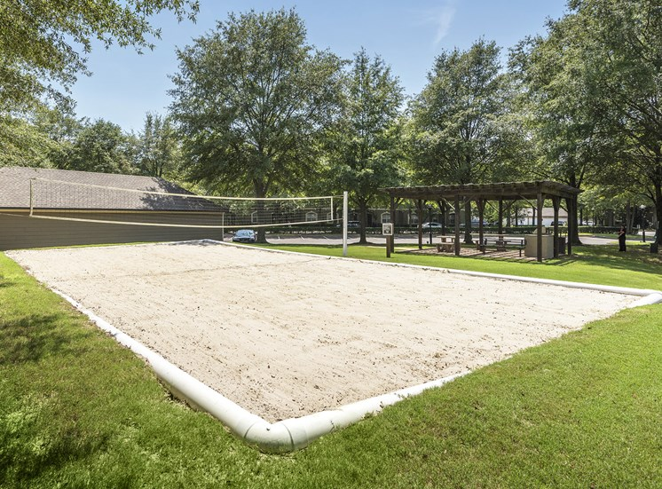 The Estates at River Pointe - Sand volleyball court