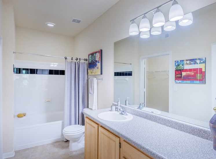 The Estates at River Pointe - Bathroom vanity