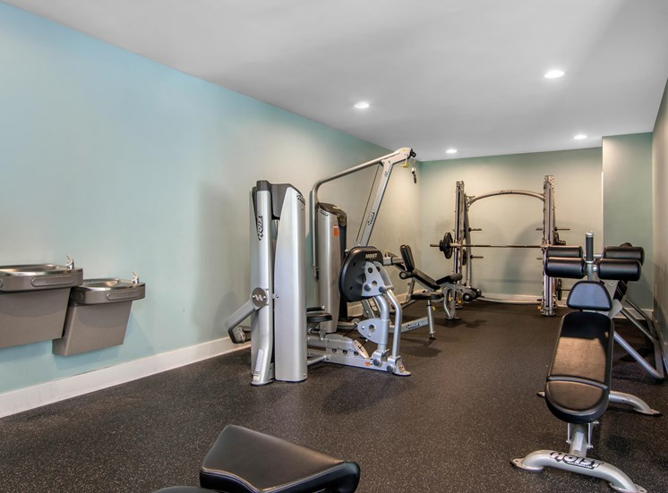 Strength and Cardio Fitness Center with Free Weights