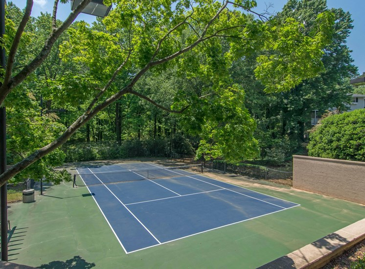Dunwoody Village Sports Court