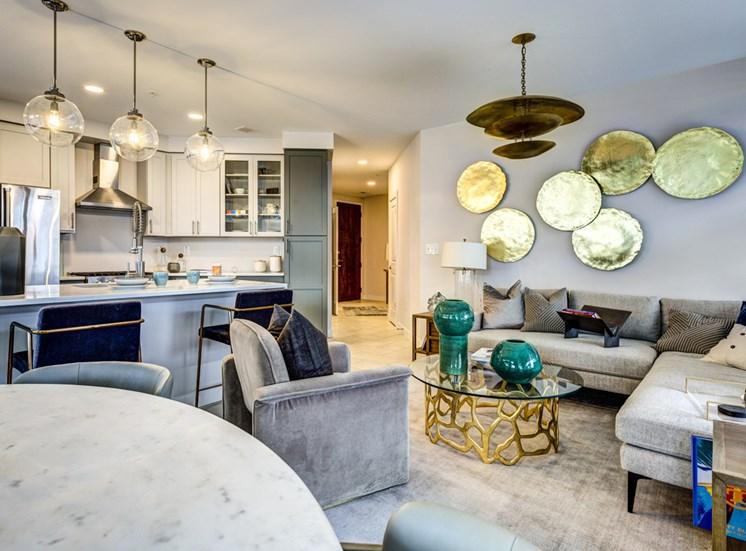Icon luxury apartments in Norfolk VA