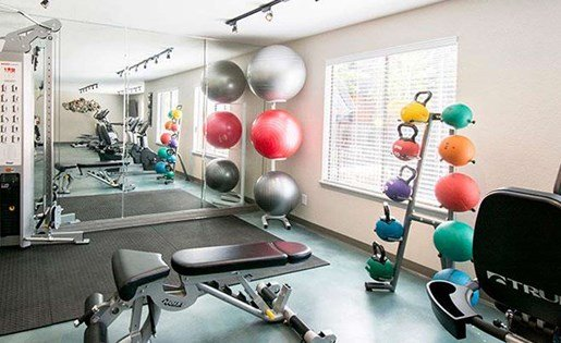 Community fitness center at palm canyon with machines and balance balls at Palm Canyon, Tucson