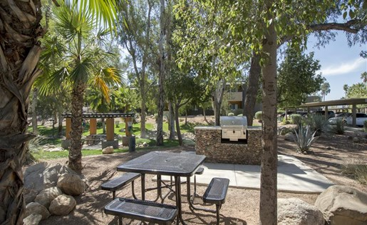 Enjoy a day with family and friends at our community BBQ and picnic area at Palm Canyon, Tucson, AZ 85741