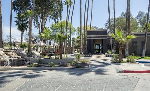Palm trees greet you as you pull up to the main office at Palm Canyon, Arizona