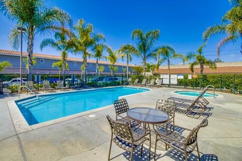 Harbor Cliff Apartments Lifestyle - Pool Deck & Pool