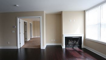 151 Mill Street 1-3 Beds Apartment for Rent Photo Gallery 1