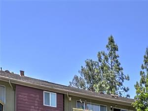 Apartments for Rent in El Cajon, CA - Forest Park Pool