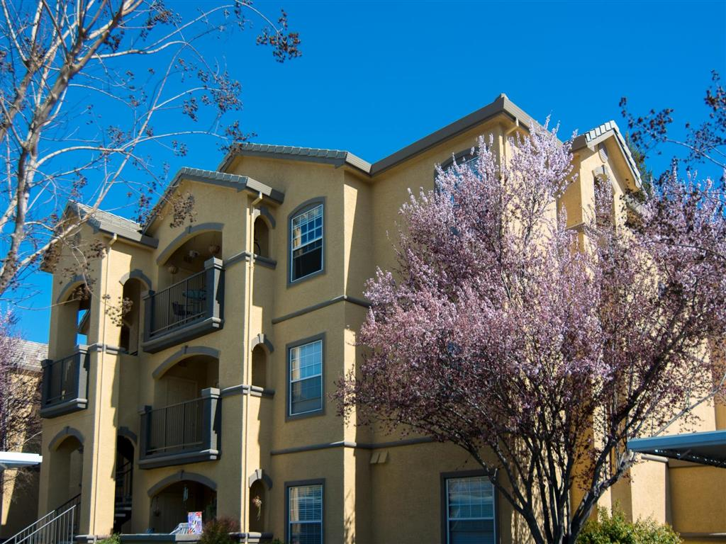 pet friendly apartments for rent in central valley north ca from rh rentcafe com