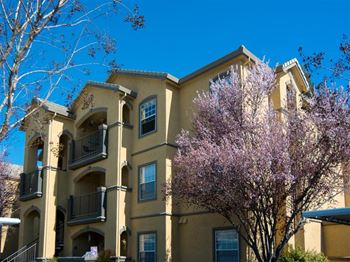 12499 Folsom Blvd 1-3 Beds Apartment for Rent Photo Gallery 1