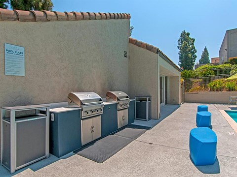 Pet Friendly Apartments in Spring Valley CA - Skyline Apartments Barbeque Area