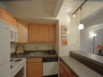 4444 West Pine Boulevard Studio-2 Beds Apartment for Rent Photo Gallery 1
