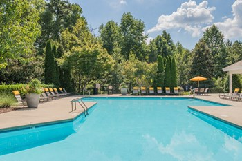 10311 Falls Mill Drive 1-3 Beds Apartment for Rent Photo Gallery 1