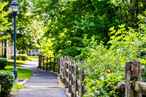 Scenic Paths Throughout Community